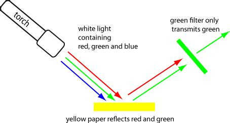How to Write a Reflective Essay Effectively: from the